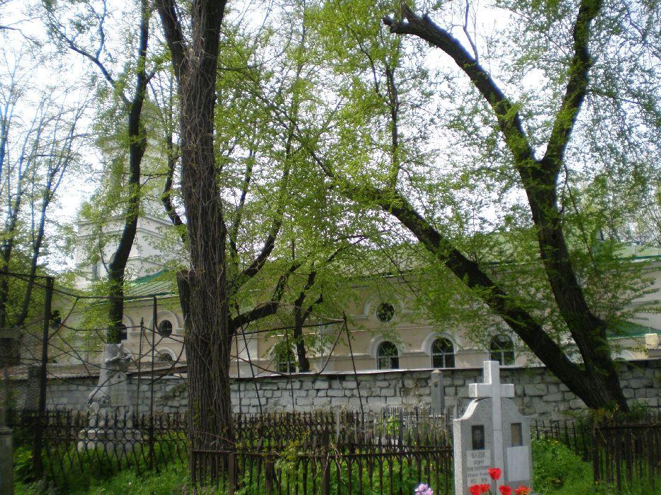 Вид на церковь Святого Владимира