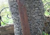 Обломок старого надгробия