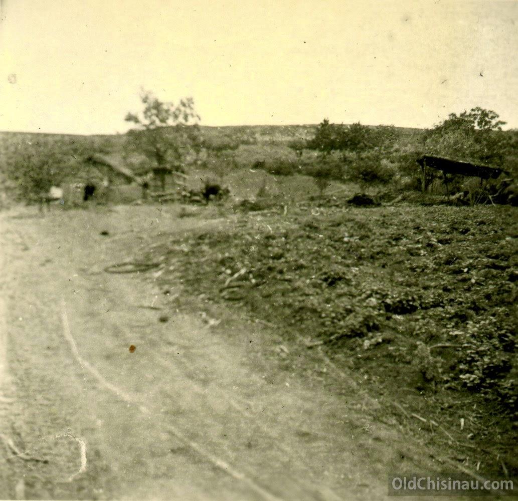 Cobusca Veche 1944 mai 2a