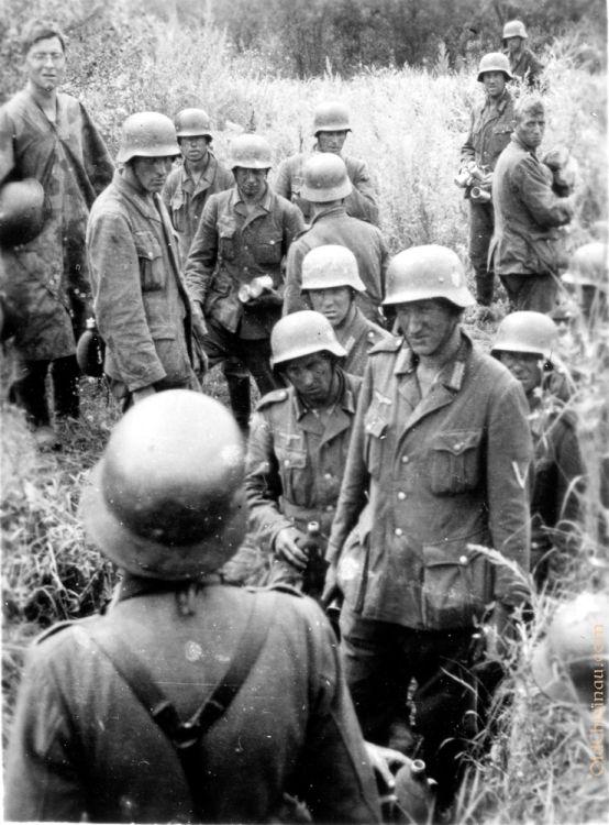 Днестр, 23 июля 1941 года